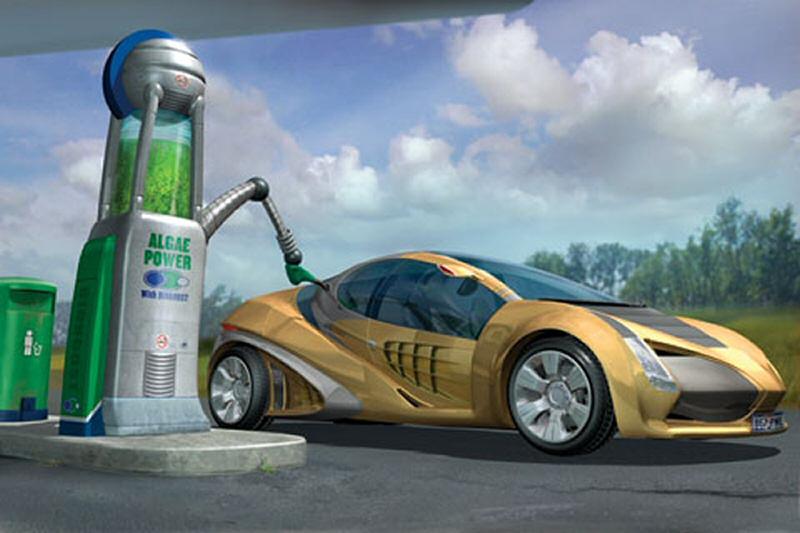 Biocarburant_Algue